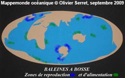 De l'Atlantique au Pacifique, un seul océan mondial